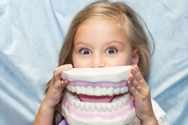 Kind mit Zahnmodell